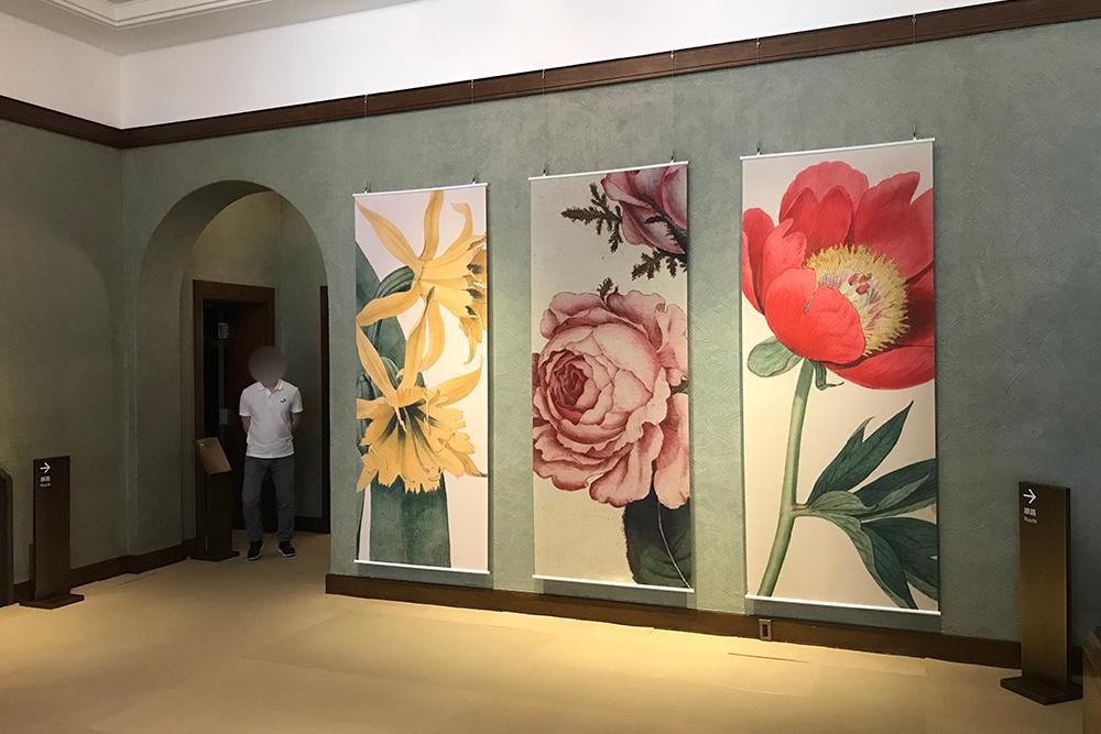 「キューガーデン 英国王室が愛した花々 シャーロット王妃とボタニカルアート」展を見てきました